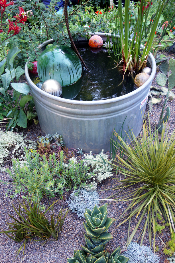 How to Keep Garden Hydrated to Survive Heat Wave