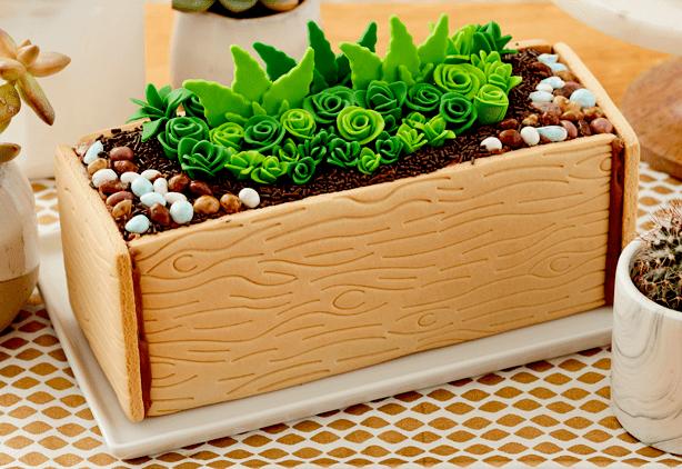 succulents_cookie_kit