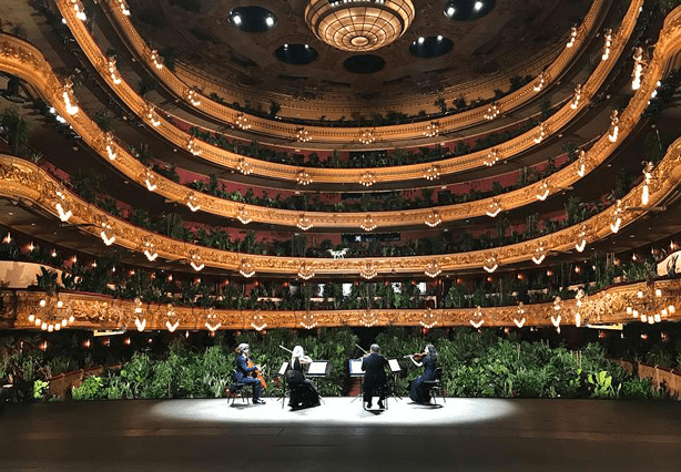 Barcelona_opera_reopens_to_audience_of_2,292_plants