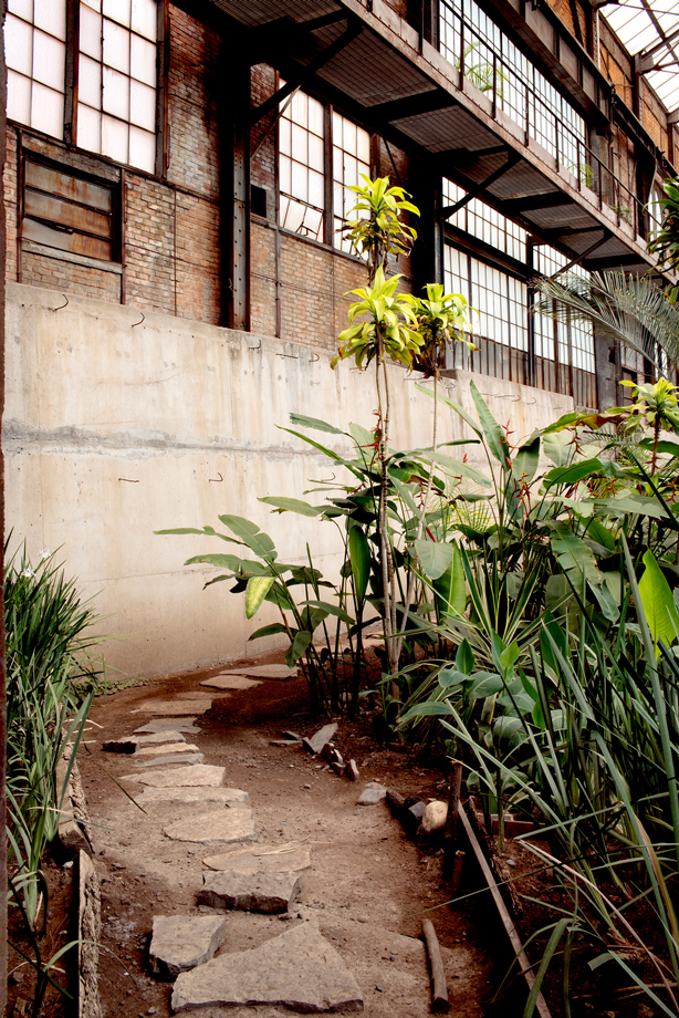 Hidden Greenhouse Garden in Mexico City Abandoned Factory