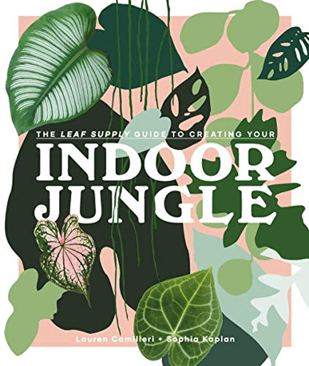 Indoor_jungle_guide _to_indoor_plants
