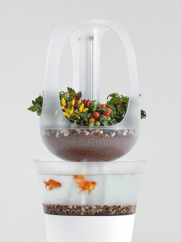 This Modern Aquaponics Furniture Design Mimics Natural Environment - Urban Gardens