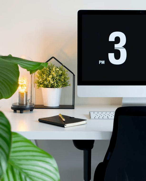 biophilic-workplace-design-potted-desk-plant