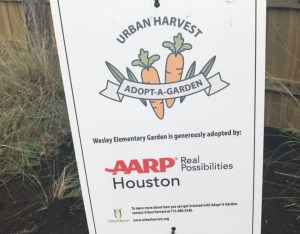 Adopt-A-Garden Program Brings Healthy Foods To Complete Communities