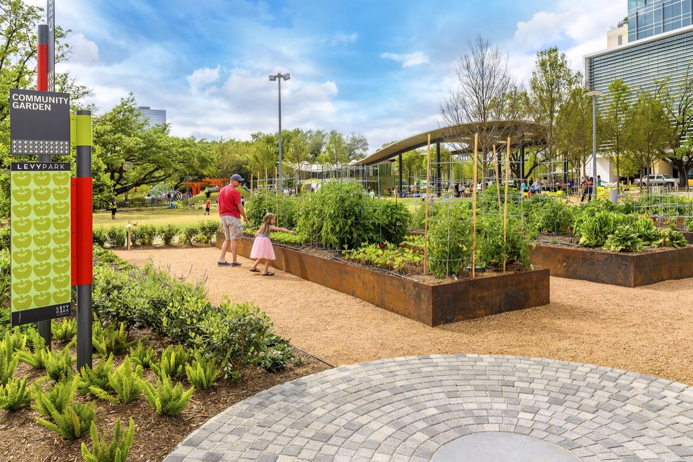 Levy Park Community Garden