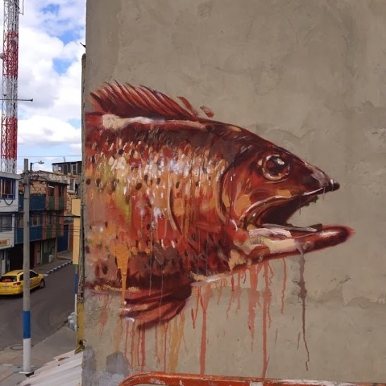 fintan-magee-colombia-3