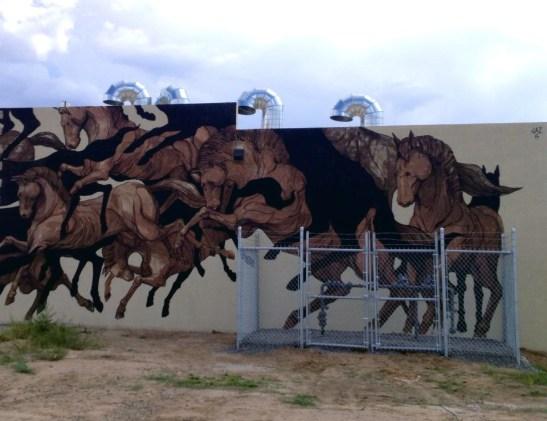 jaz-painted-desert-project-usa-4