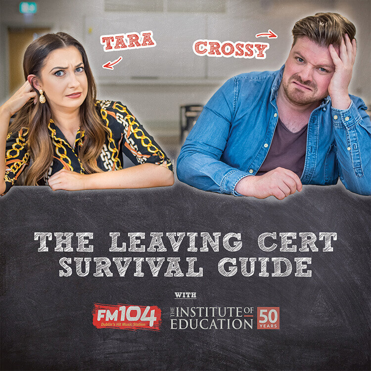 Leaving Cert Survival Guide podcast cover