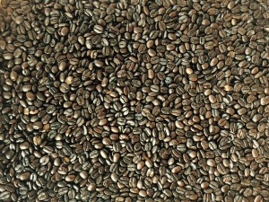 Roasting coffee beans owe their allure to Maillard as well.