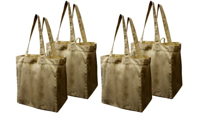 Earthwise canvas shopping bags