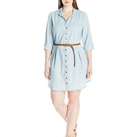 Fanny Denim Belted Shirt Dress