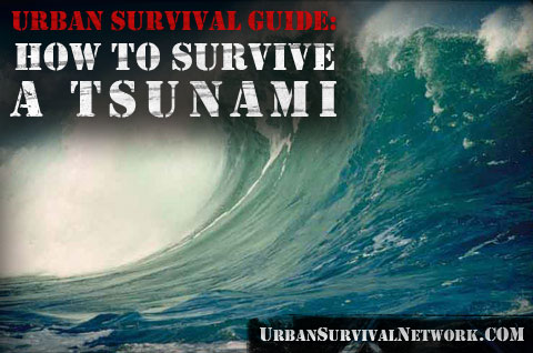 Tsunami Survival Guide