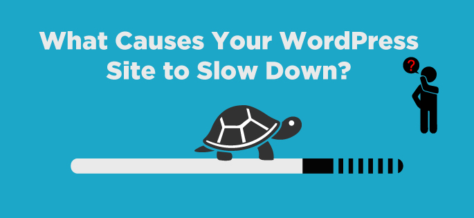 What Causes Your WordPress Site to Slow Down?