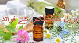 Benefits of herbal beauty products in hindi