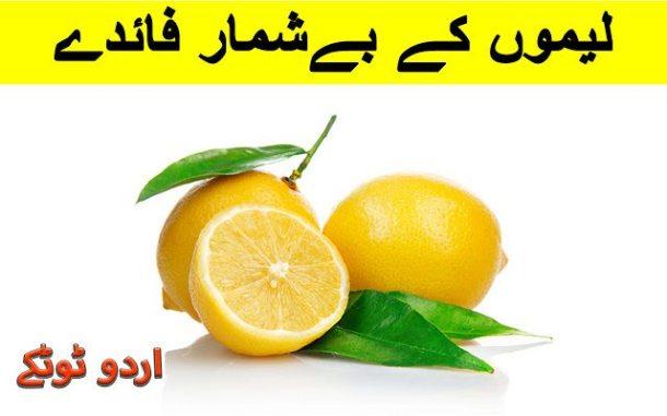 afghani pulao recipe in urdu, afghani chicken pulao recipe, afghani pulao recipe video, afghani mutton pulao recipe in urdu,