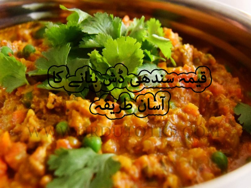 sindhi keema recipe