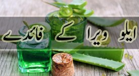 benefits of aloe vera in urdu