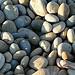 Dorset Pebbles