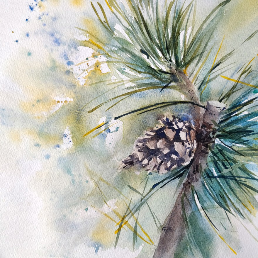 Pomme de pin à l'aquarelle