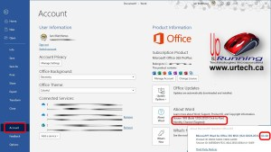 what version channel build of Office 365 Pro Plus do I have
