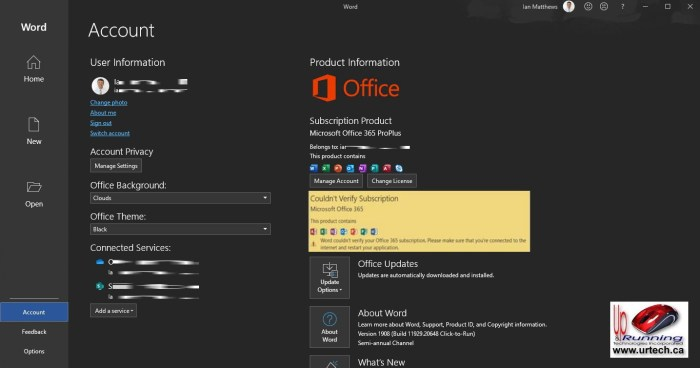 Word Could Not Verify Your Office365 Subscription