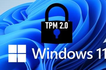 Windows 11 TPM 2 0