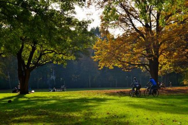 حديقة تيرتايغن من اجمل حدائق برلين