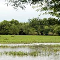 Uruguay por dentro de visita a Río Negro
