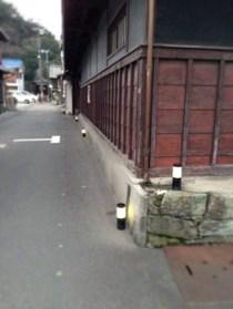 今年は開演時間が早く、行きはまだ明るい時間帯でした。 尾崎家の角、石垣は紀州の青石