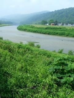 Meandering Potomac