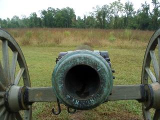 Barrel View