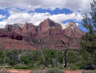 Zion's View