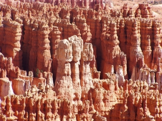 Inside the Bryce Amphitheater