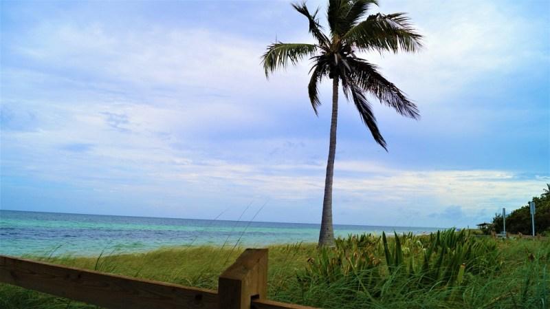 Anschnallen in Florida