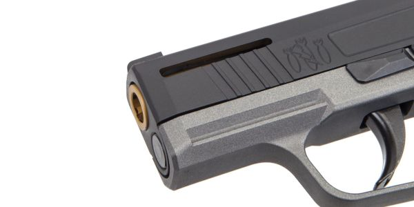Danger Close Armament: First Custom Sig Sauer P365 - USA Gun Shop