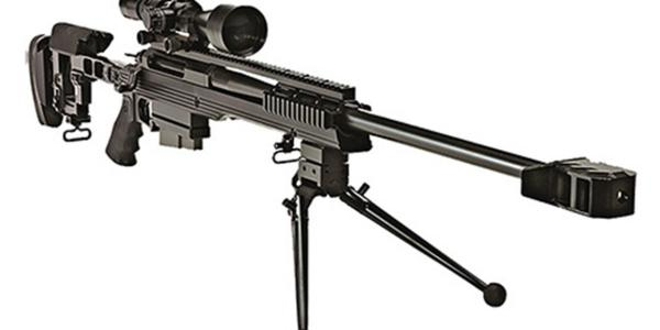 Armalite AR-31 a target shooter and a sniper rifle