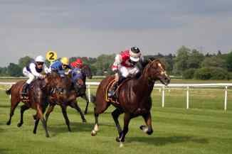 Pferderennen Kentucky Derby