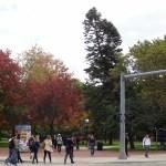 Ann Arbor University