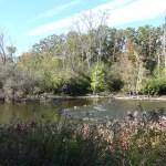 Ann Arbor Huron River