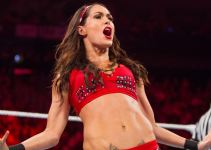 Brie Bella Biography, Career, and Net Worth 2020