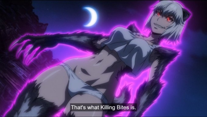 Best Ecchi Anime
