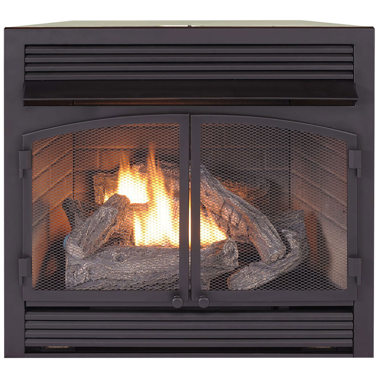 Dual Fuel Fireplace Insert Zero Clearance