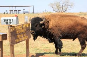 Texas0162