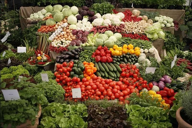 laxanika-λαχανικά-vegetables