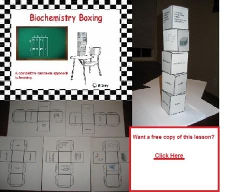 Biology Lesson Plans-Macromolecule Lesson (Biochemistry boxing)