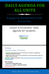 Enzyme Daily Agenda
