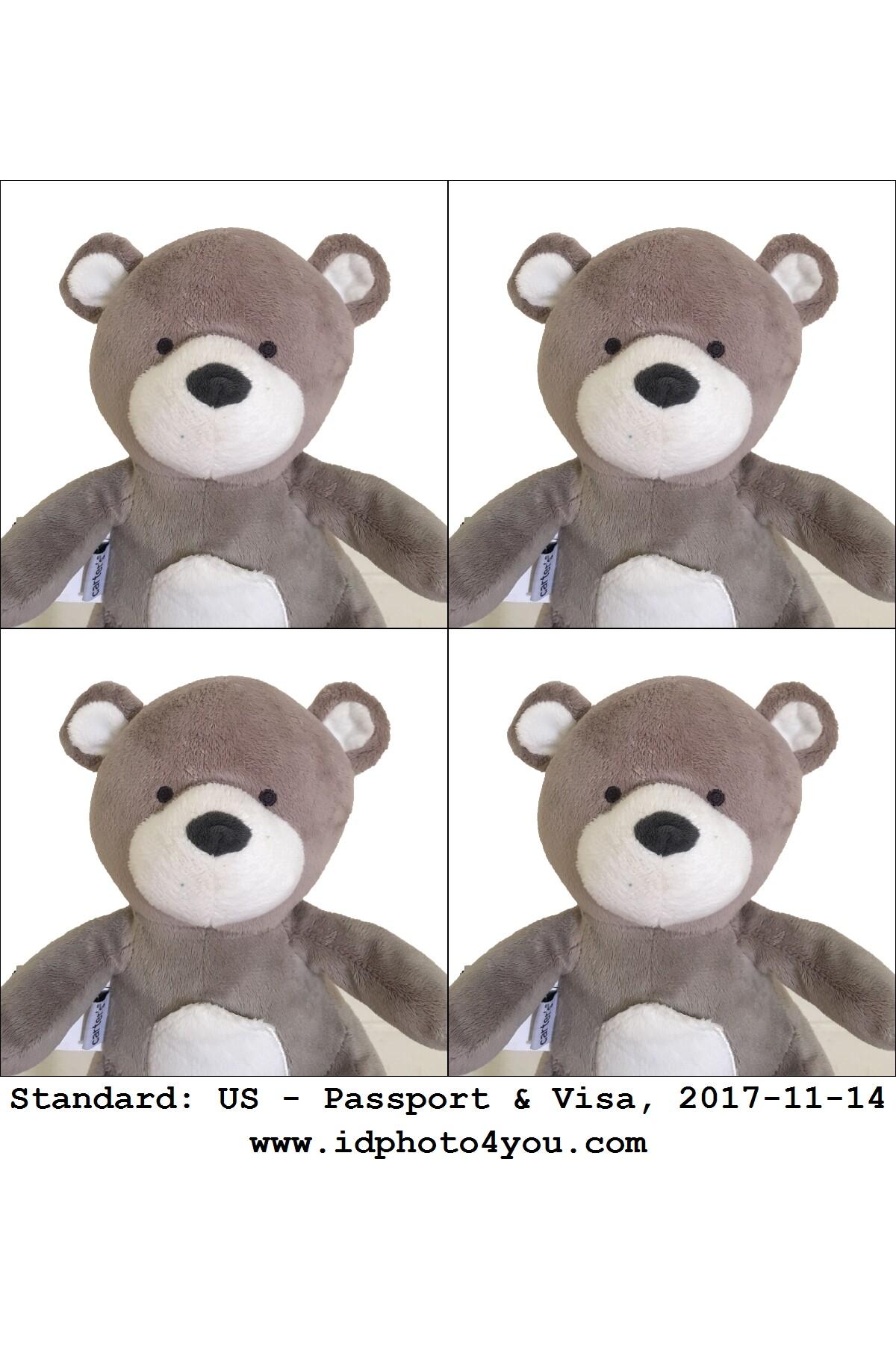 美国护照和签证照片DIY