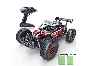 SPESXFUN 1/14 Scale High Speed Remote Car
