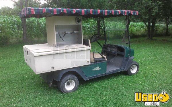 Gas Powered Golf Carts Indiana
