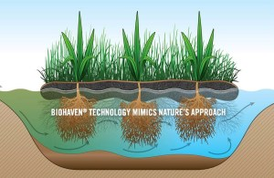 Artificial Floating Islands Clean Water, Attract Beneficial Wildlife